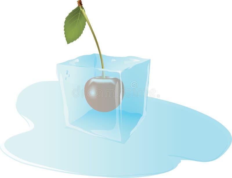 Frucht gefrorene Kirsche im Eiswürfel lizenzfreie abbildung