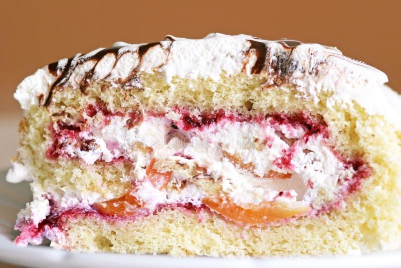 Frucht-Kuchen stockbild
