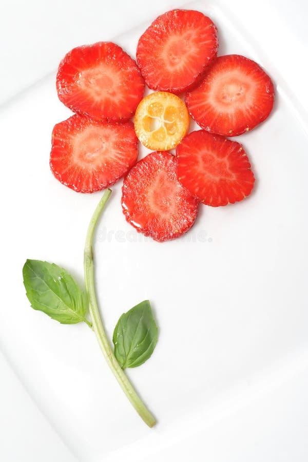 Frucht Nochlebensdauer lizenzfreies stockfoto