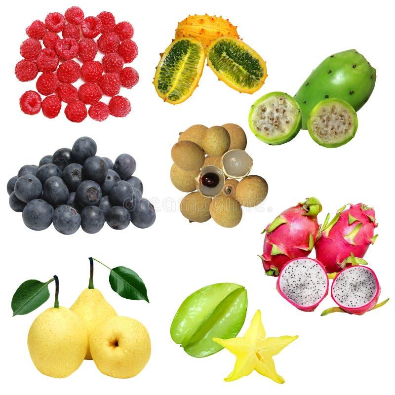 Frucht-Set lizenzfreies stockbild