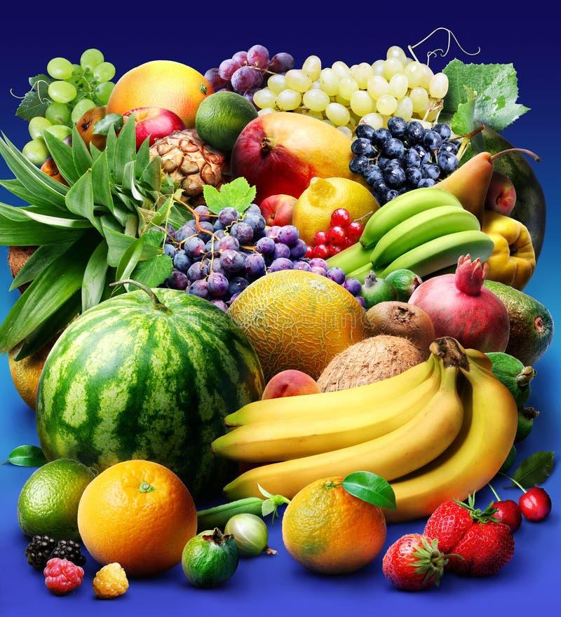 Frucht u. Beeren lizenzfreies stockbild