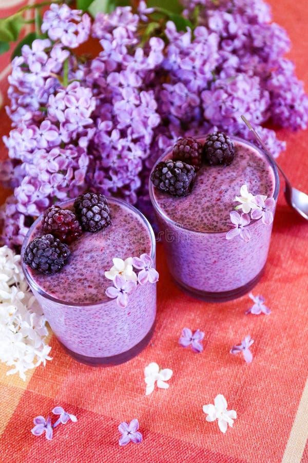 Frucht und Beere gesunder chia Pudding lizenzfreies stockfoto