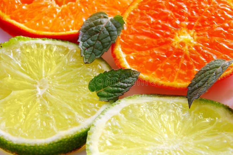 Frucht und Minze lizenzfreies stockbild