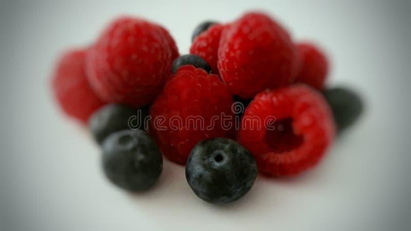 Fruchtig oder Blaubeeren? lizenzfreie stockfotos