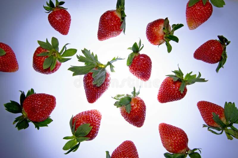 Fruchtige fliegende Erdbeeren lizenzfreie stockbilder