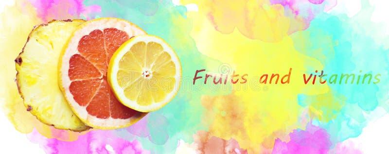 Fruchtige Zusammensetzung gemacht mit Scheiben der Zitrone, der Ananas und des gapefruit lizenzfreie stockfotografie