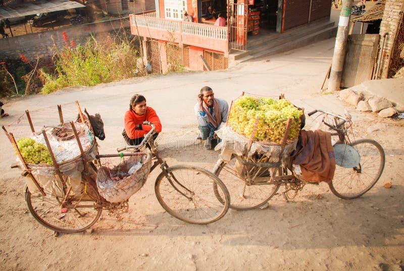 Fruchtkaufmann, der ihre Frucht auf dem Fahrrad neben der Straße in der Hauptstadtregion, Kathmandu, Nepal saling ist lizenzfreie stockbilder