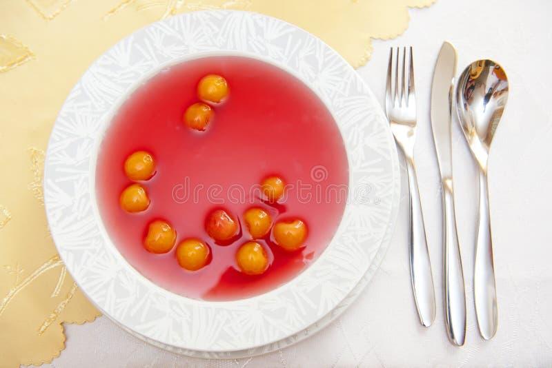 Fruchtsuppe lizenzfreie stockfotografie