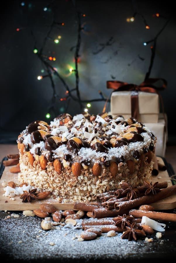 Fruit, écrou et miette de décoration de gâteau de Noël Complété avec du chocolat, les mandarines, amande, flocons de noix de coco photographie stock libre de droits