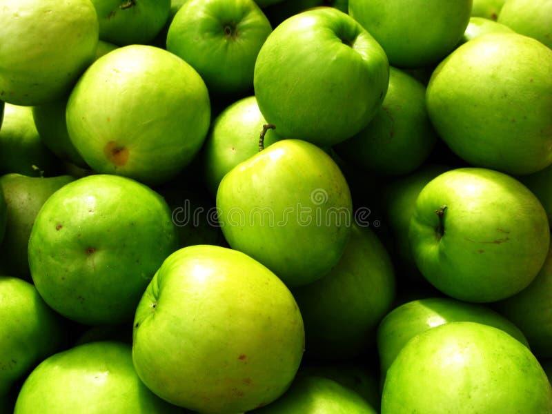 Download Fruit stock image. Image of nature, vitamin, tree, beverage - 13904599