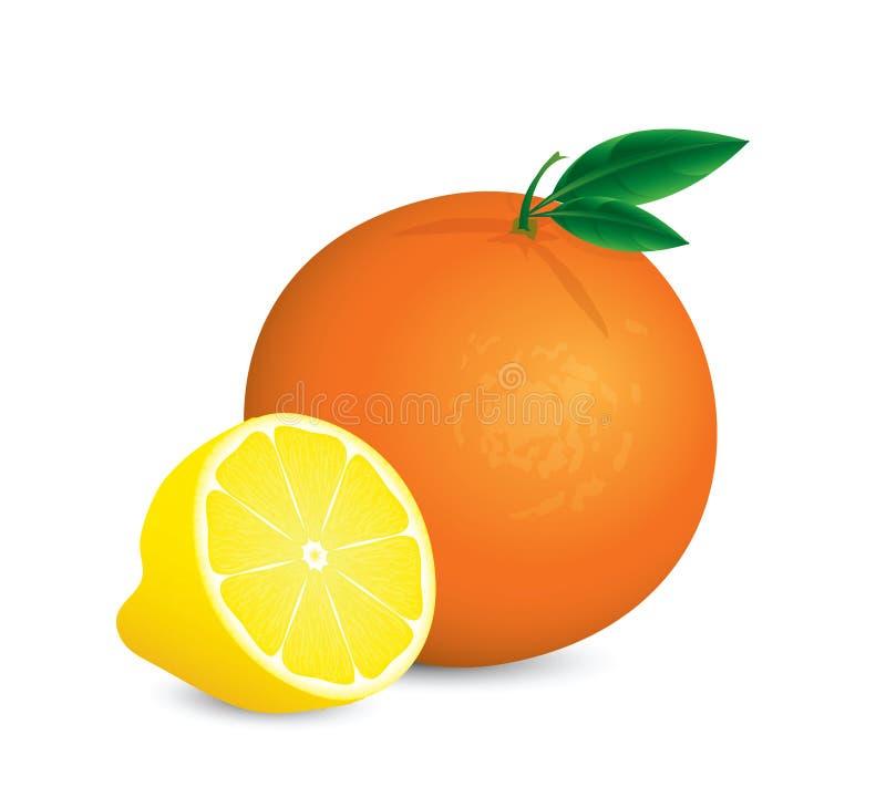 Download Fruit stock illustration. Image of lemonade, ingredient - 18894169