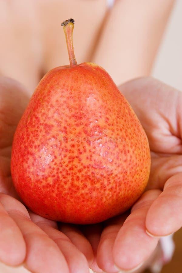 Download Fruit #2 stock foto. Afbeelding bestaande uit handen, lichaam - 290132