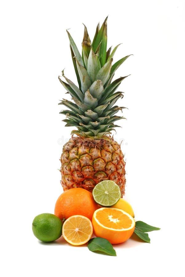 Free Fruit 2 Stock Image - 7306281