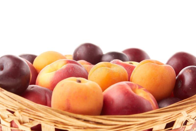 fruit Abrikozen, nectarines en pruimen royalty-vrije stock afbeeldingen