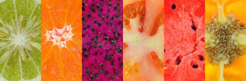Download Fruit background stock photo. Image of fresh, sweet, fruit - 39513908