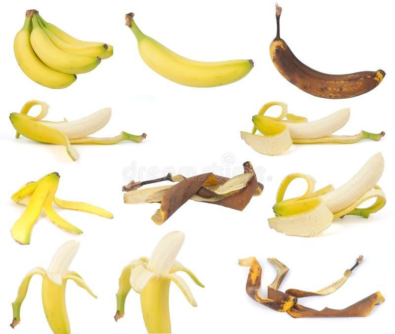Fruit, Bananas Stock Photos