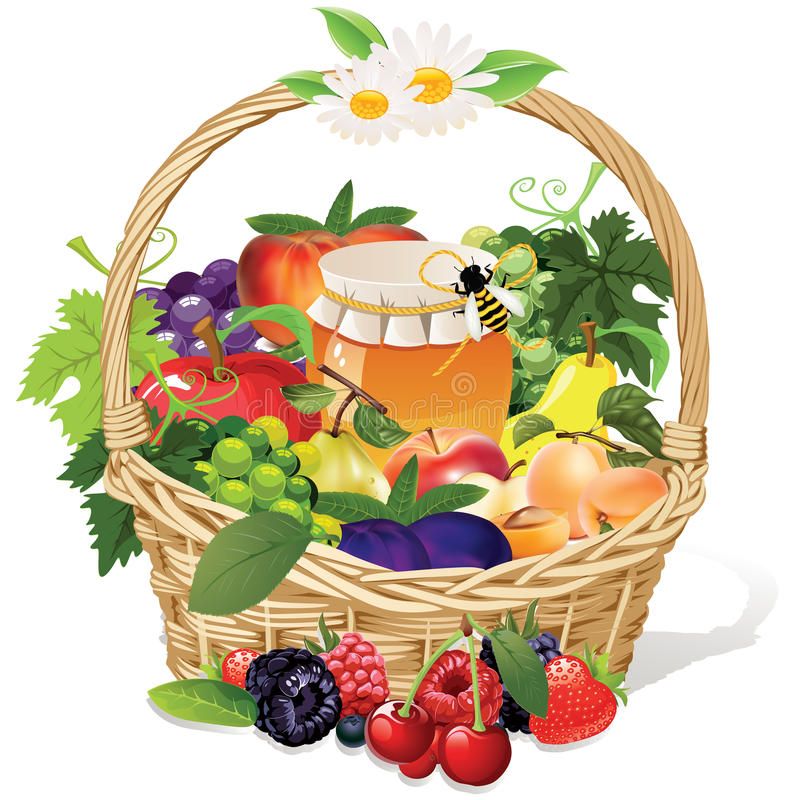 Fruit basket stock illustration