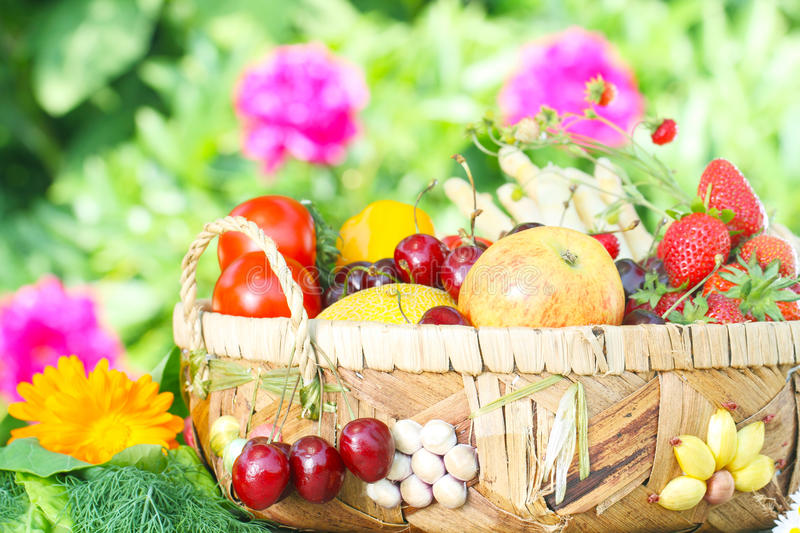 Fruit basket. Stands in the garden stock photo
