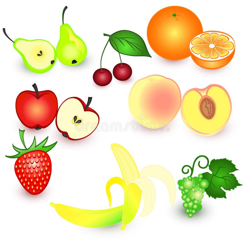 Download Fruit and berries stock vector. Image of painting, grape - 26528807