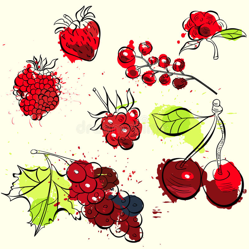 Fruit and berries illustration royalty free illustration