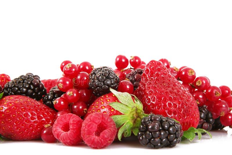 Fruit berries on white background. Fresh fruit berries on white background royalty free stock photo