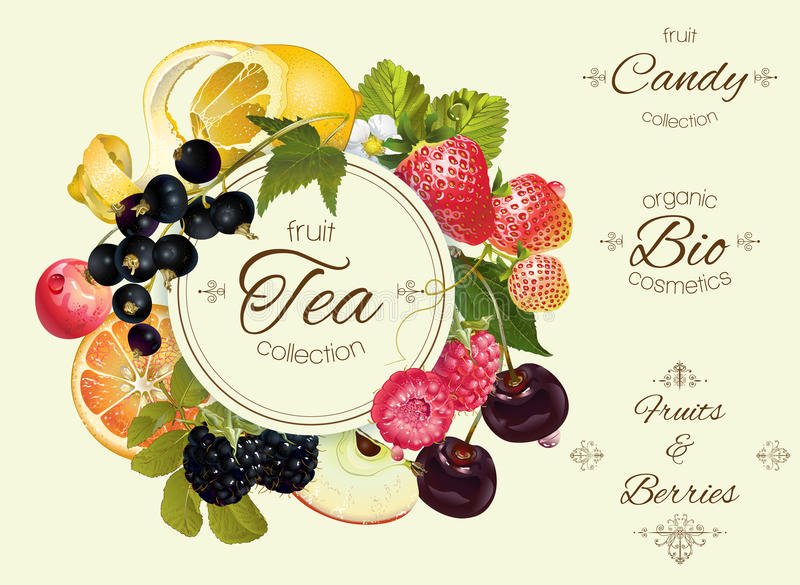 Fruit and berry banner vector illustration