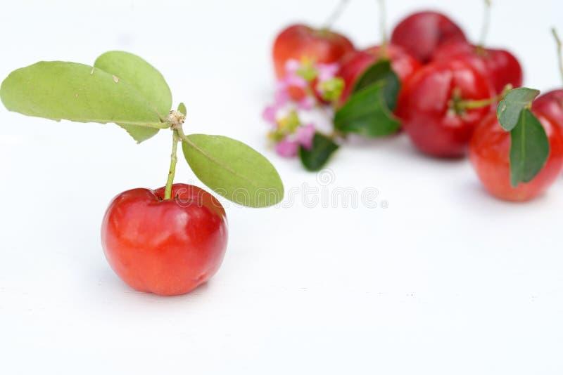 Fruit brésilien d'Acerola photographie stock