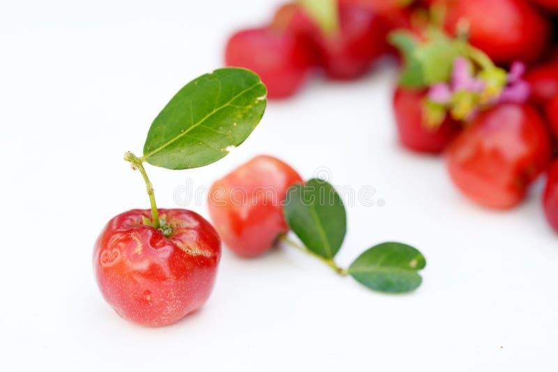 Fruit brésilien d'Acerola photo libre de droits