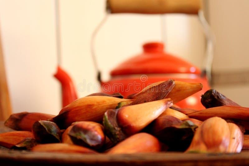 Fruit brésilien de pignon typique photo stock