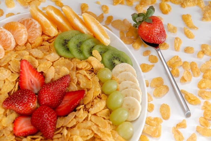 Download Fruit breakfast stock photo. Image of collection, seasonal - 1867592