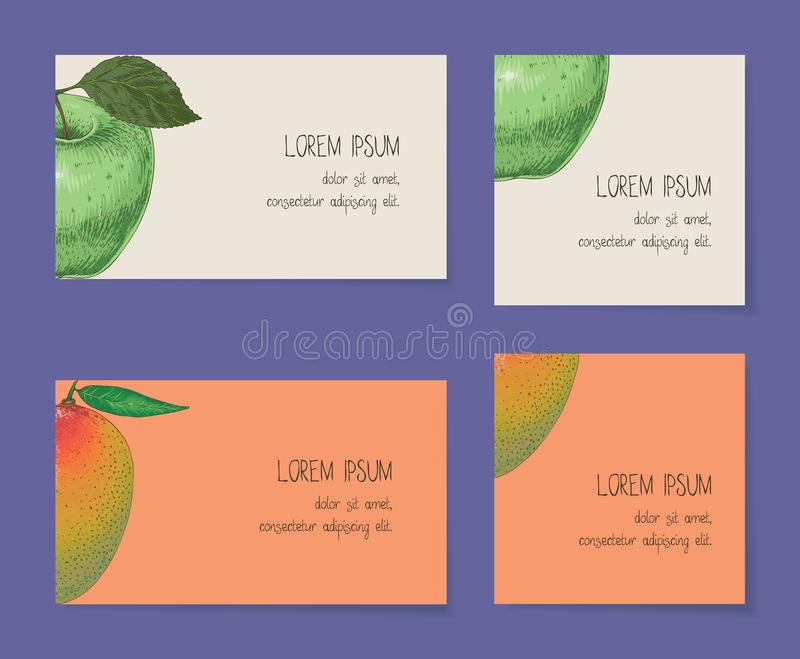 Fruit Business Cards Template Collection Stock Vector - Illustration ...