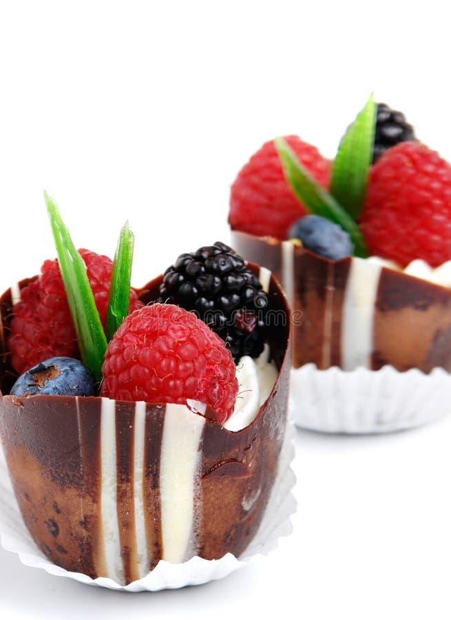 Download Fruit Cake stock photo. Image of cake, yummy, white, chocolate - 2304652