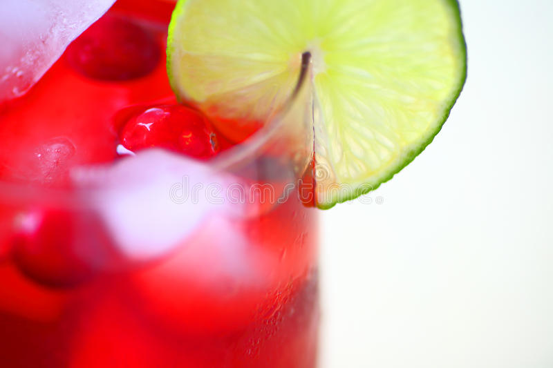 Fruit cooler with cranberries and lime royalty free stock photography
