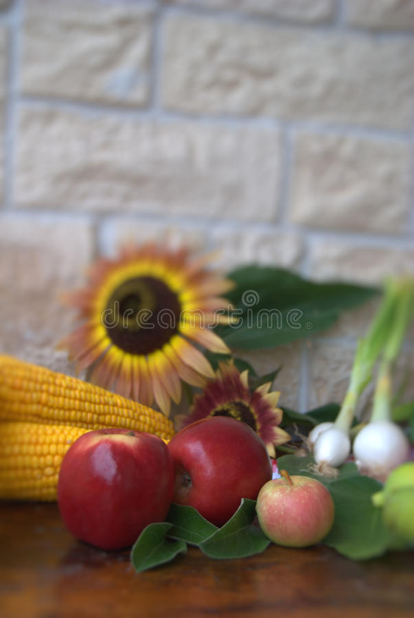 Download Fruit and corn stock photo. Image of organic, maize, cook - 16052216