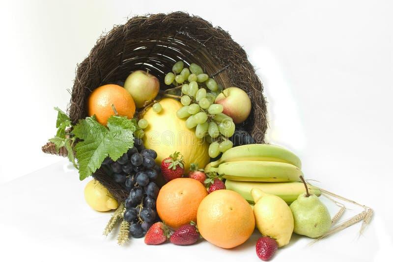 Fruit Cornucopia 3 stock images