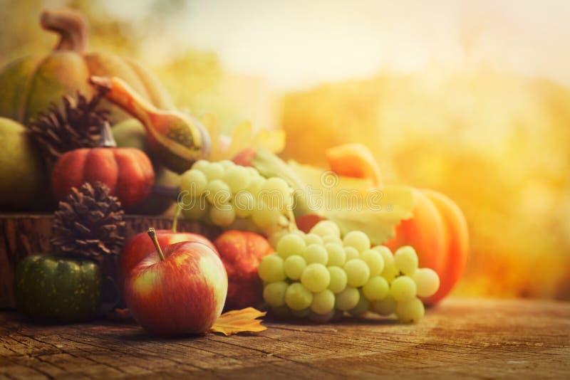 Fruit d'automne photo libre de droits