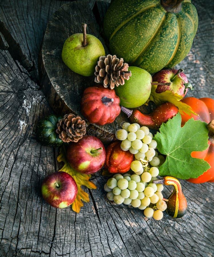 Fruit d'automne photographie stock libre de droits