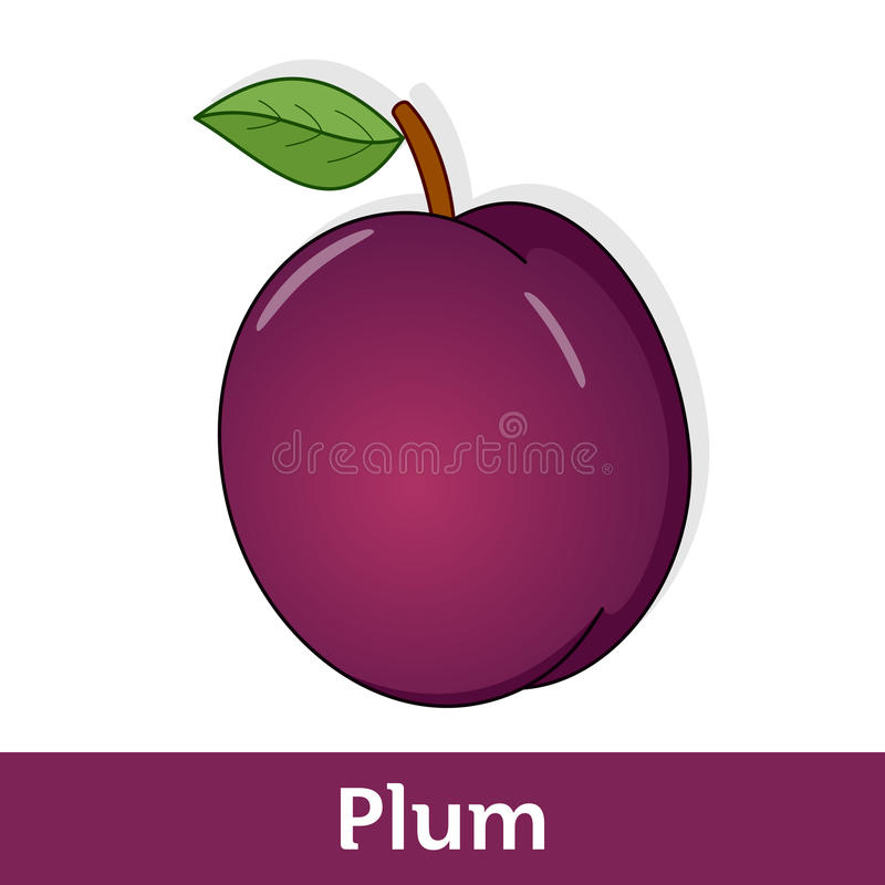 Fruit de bande dessinée - Violet Plum avec la feuille verte illustration libre de droits