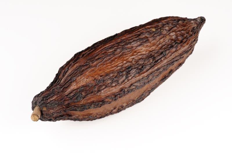 Fruit de cacao photographie stock