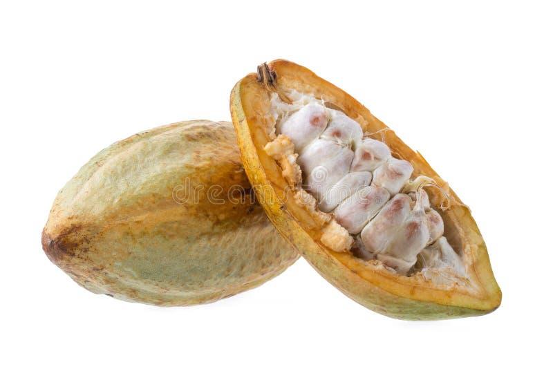 Fruit de cacao, haricots crus de cacao, cosse de cacao sur le fond blanc images libres de droits