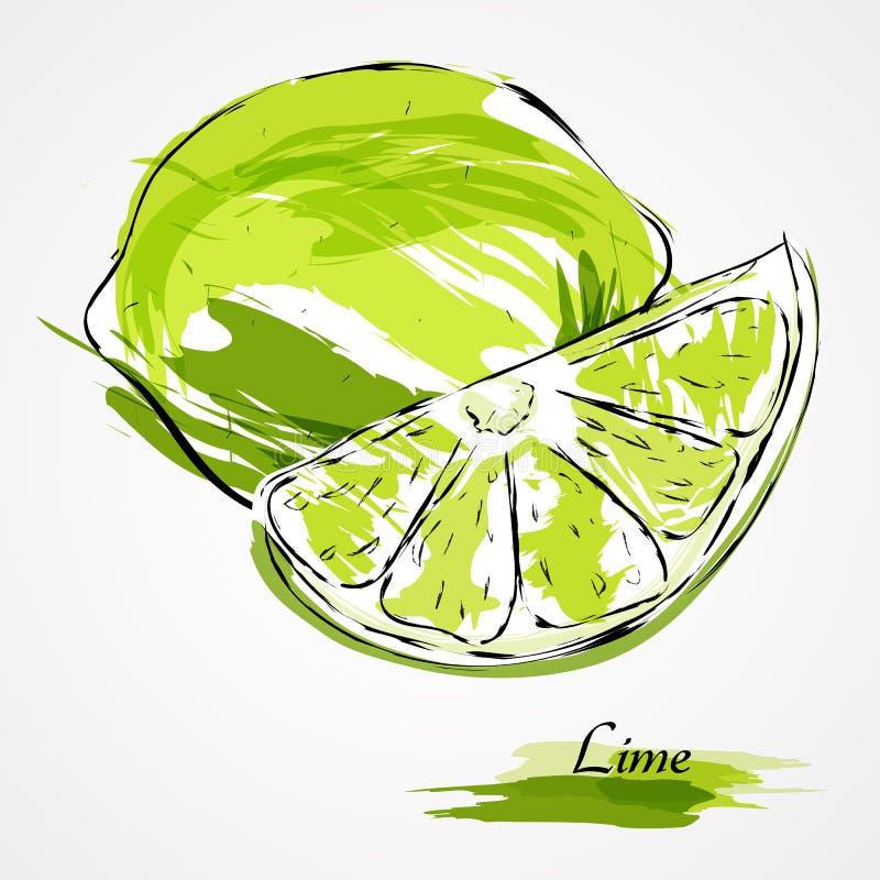 Fruit de chaux illustration stock