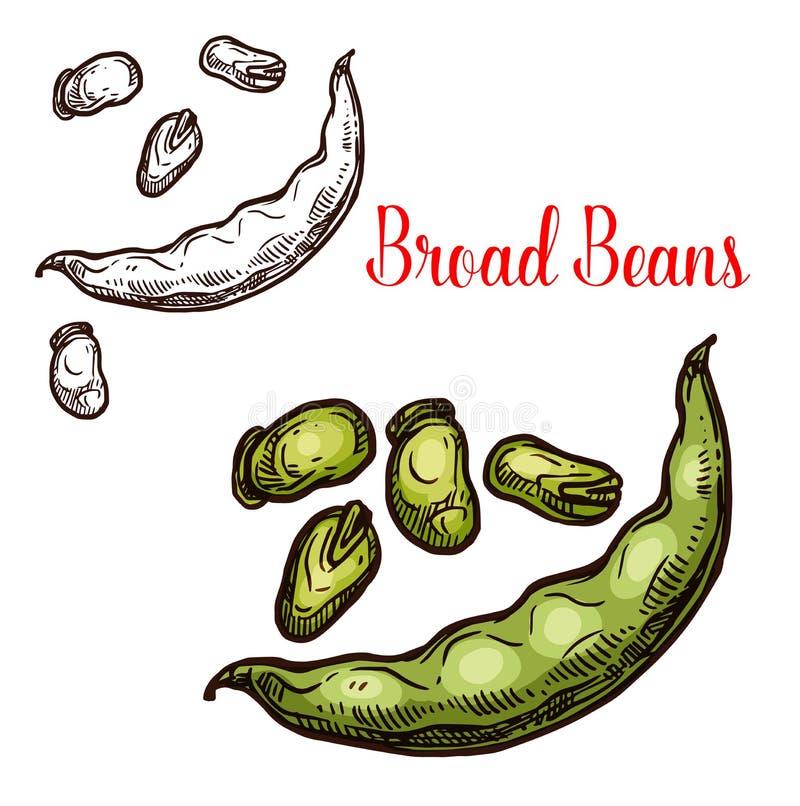 Fruit de croquis de vecteur de haricots de pain illustration libre de droits