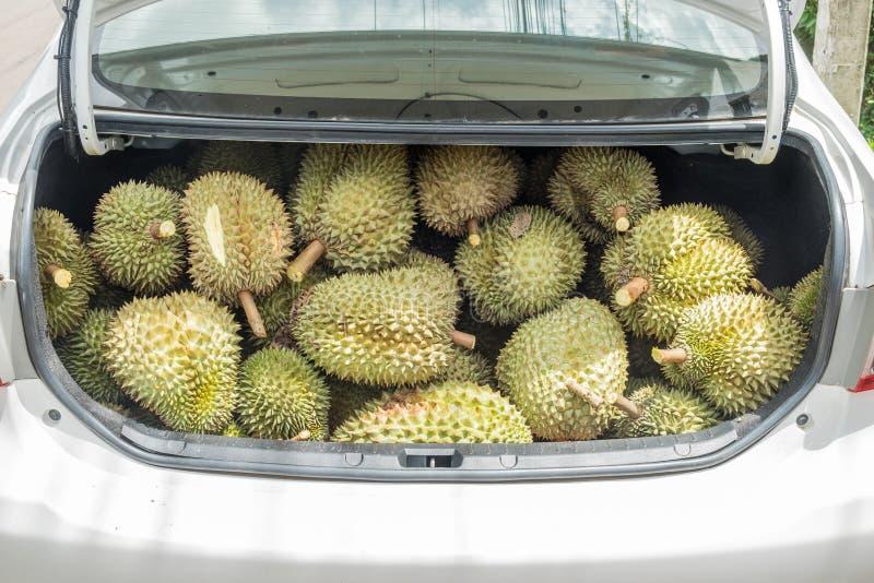 Fruit de durian à vendre dans la voiture photo libre de droits