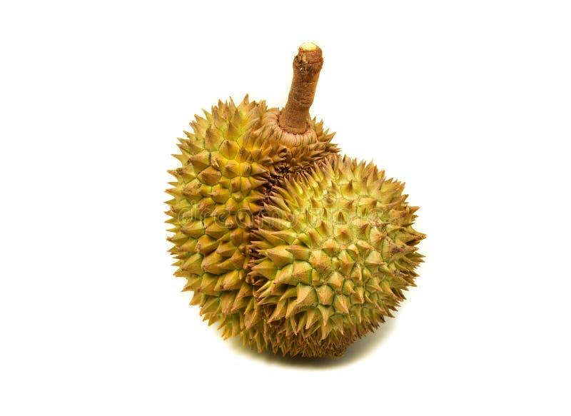 Fruit de durian images stock