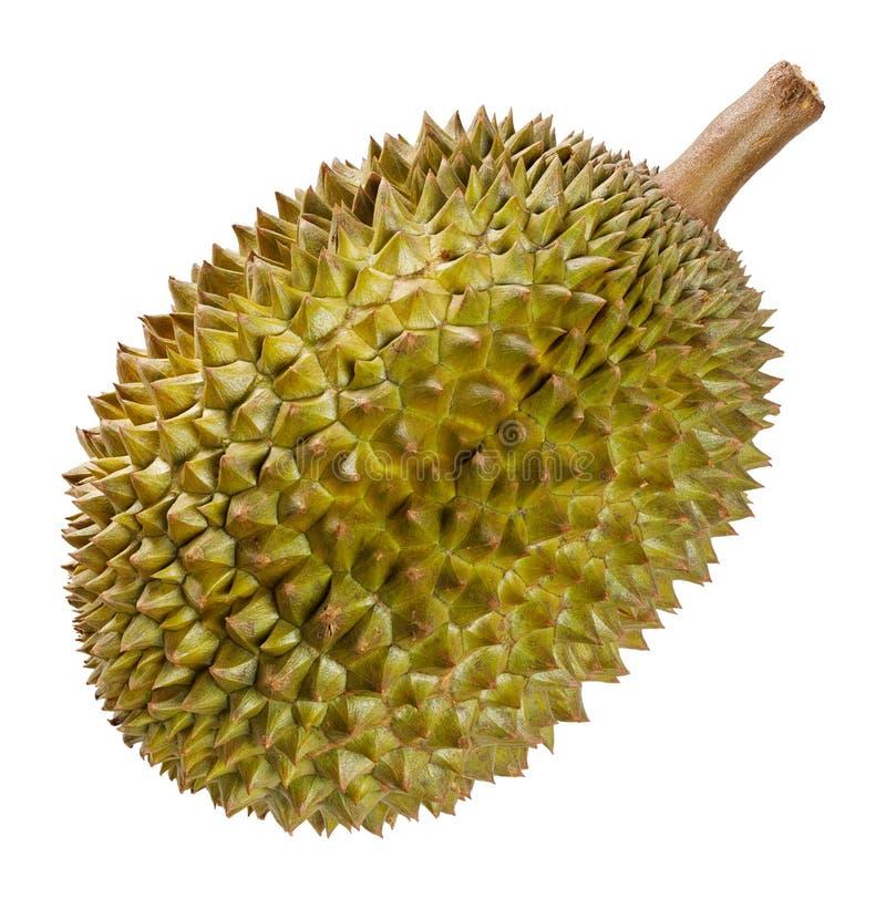 Fruit de durian d'isolement sur le blanc photos libres de droits