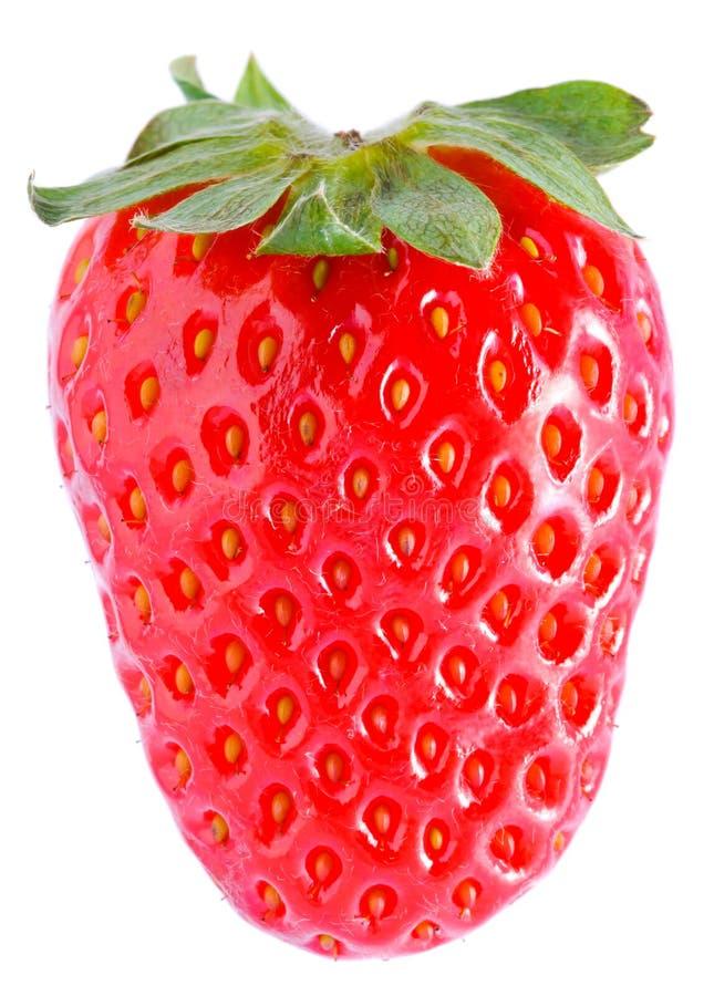 Fruit de fraise images libres de droits