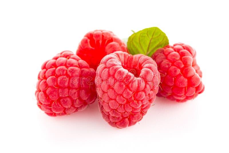 Download Fruit De Framboise D'isolement Image stock - Image du branchement, frais: 76090583