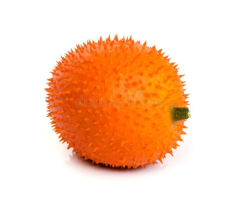Fruit de Gac image libre de droits