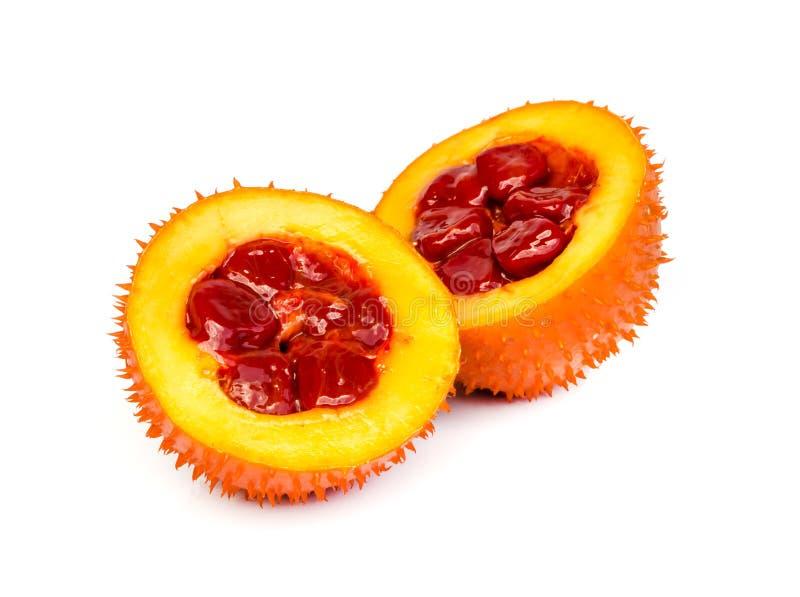 Fruit de Gac photo stock