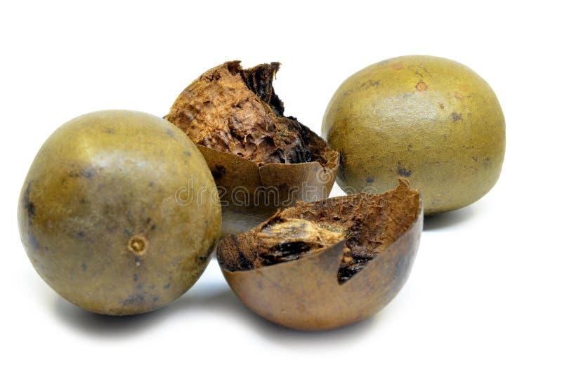 Fruit de Lo Han Guo, de moine ou de Bouddha images stock